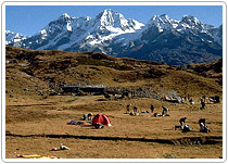 Mountaineering Expedition Mount Ladakhi, Himachal Tours